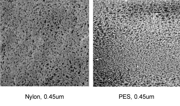 comparison between nylon and pes membranes