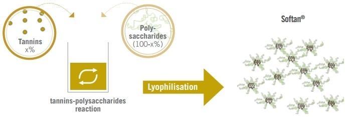 Softan P Vinification Process