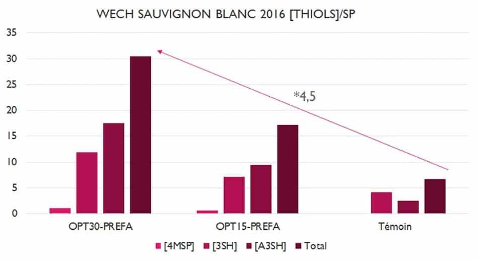 Wech Sauvignon Blanc 2016