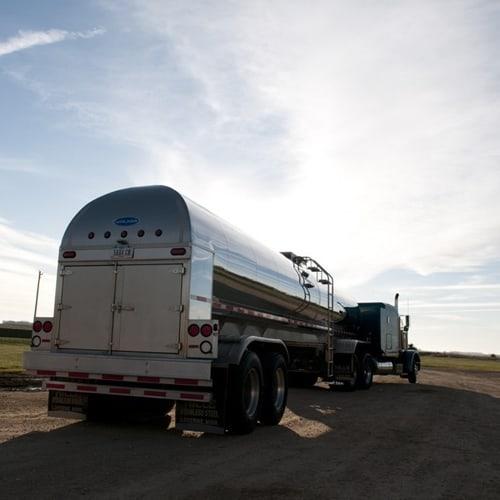 truck receival dairy plant new zealand