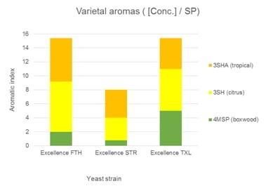 Fig 1 Varietal Aromas