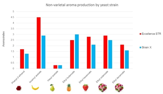 Fig 3 Non-varietal aroma production by yeast strain